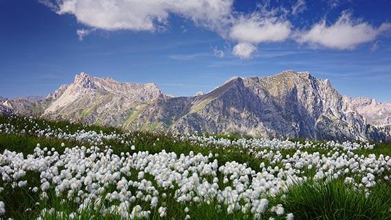 percorsi_occitani_valle_maira